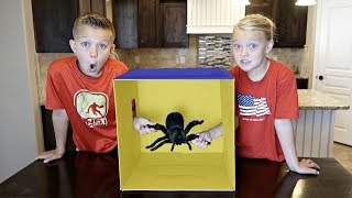 WHAT'S INSIDE THE BOX CHALLENGE!!   SUPER GROSS!