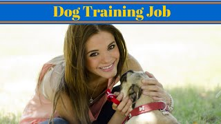 Dog Training Job - Jobs Working With Animals