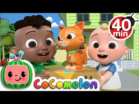 Cody Moves Next Door Song + More Nursery Rhymes & Kids Songs - CoComelon