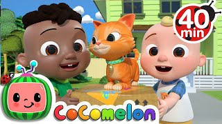 Download Cody Moves Next Door Song + More Nursery Rhymes & Kids Songs - CoComelon