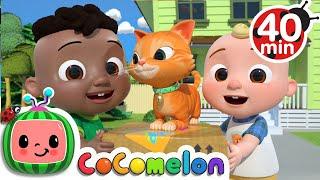 Cody Moves Next Door Song + More Nursery Rhymes \u0026 Kids Songs - CoComelon