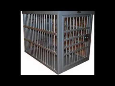 heavy-duty-dog-kennel