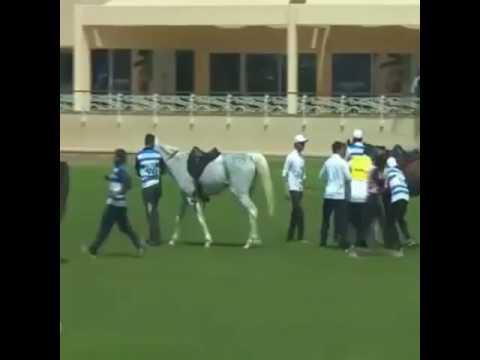 Fazza with his champion sister Futaim bin Mohammad bin Rashid Al Aktoum