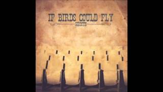 If Birds Could Fly - Skin & Bones (Album Version)