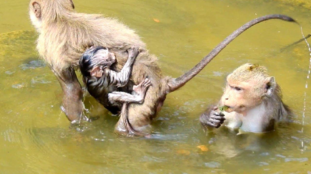 Heart-Breaking! Pity Ada! Why Anita Kidnap Baby Swimming ...