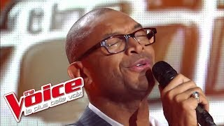 Barry White - You're the First, the Last | Bruce Johnson | The Voice France 2012 | Blind Audition