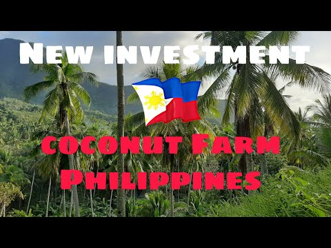 New Investment, Coconut Farm Philippines.