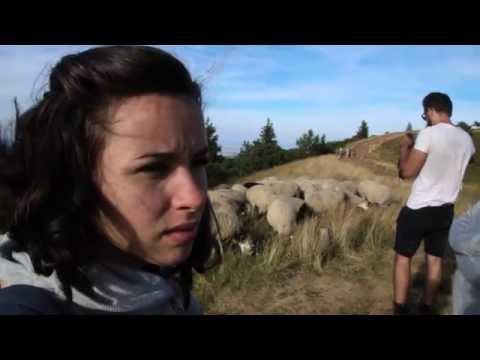 [Vlog] Face à l'Auvergne - Août 2016