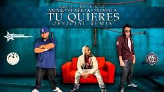 Amaro Ft. ñejo  Dalmata - Tu Quieres (nuevo Official Remix)