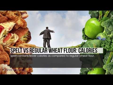Spelt Flour vs. Regular Flour