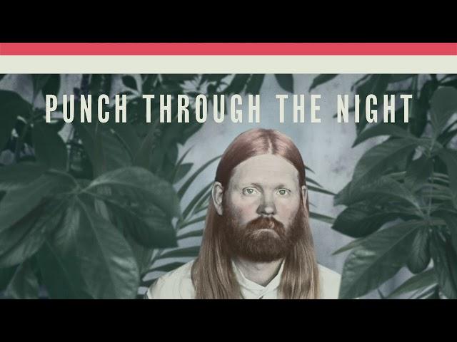 Júníus Meyvant - Punch Through The Night (Official Audio)