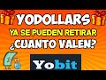 Gana 700 Yodollars GRATIS Con Yobit & CriptoTalk!