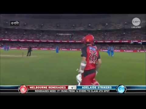 Chris Gayle equals world record of yuvi's fastest fifty in t20