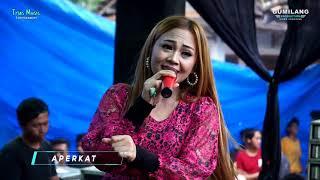 Download lagu Aku Tak Butuh Cinta Eva Aquila - Trias Music Balong Pernikahan Ari Ristanto & Fatimah