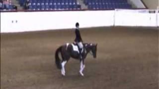 Gambar cover Amanda Murray & Heres My Number - 09 APHA World Show NY Equitation Finals
