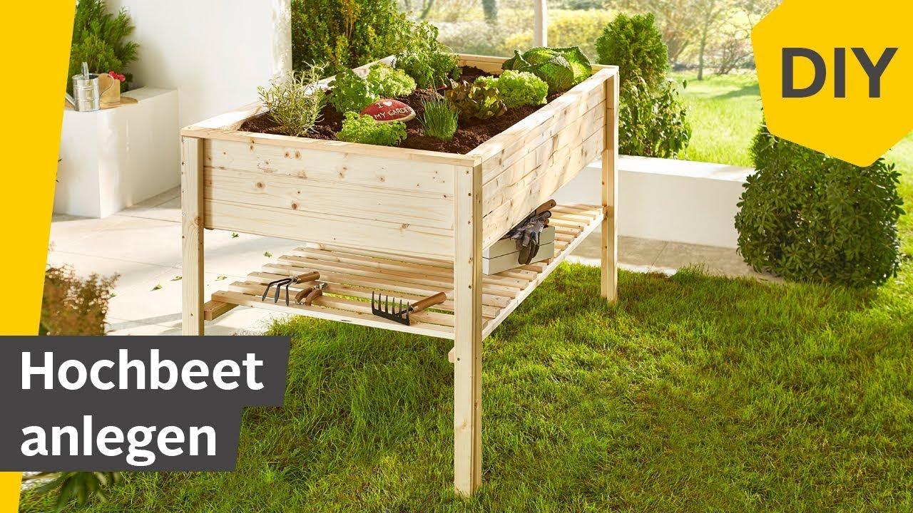 Diy Hochbeet Anlegen Befüllen Bepflanzen Roombeez Powered By