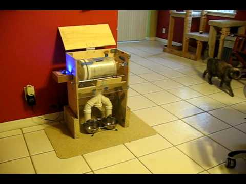 Arduino Based Laser Controlled Wireless Automatic Cat