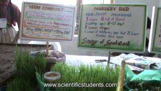 SRI Cultivation Method
