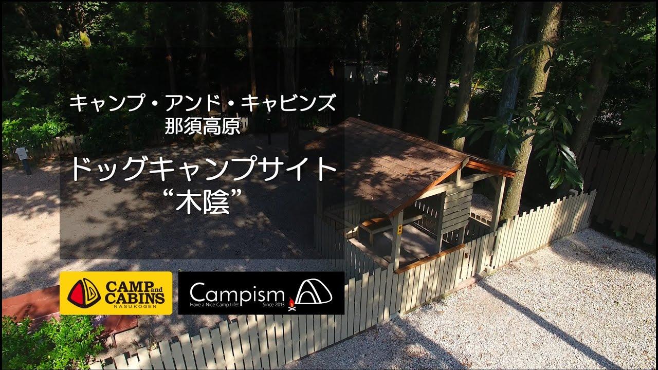 【キャンプ・アンド・キャビンズ那須高原】ドッグキャンプ ...