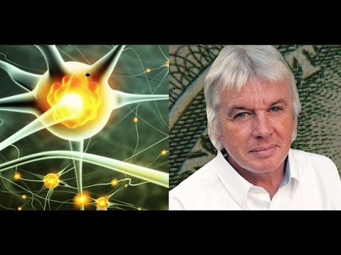 Electric nature of the human body