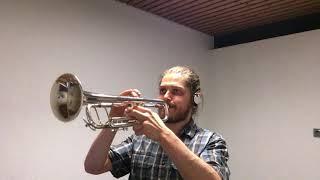 "Meshuggah ""Stifled"" Solo on Trumpet"