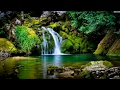 Zen Mindfulness Meditation | Garden of Tranquillity | Zen Buddhist Guided Meditation