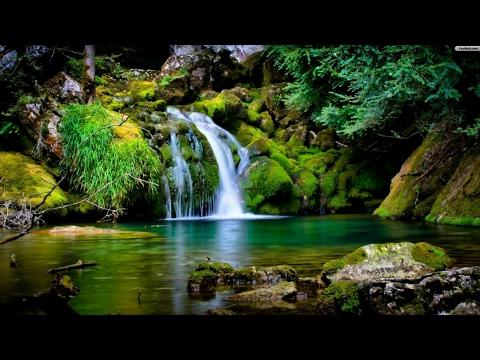 Zen Mindfulness Meditation | Garden of Tranquillity | Zen Buddhist Guided Meditation