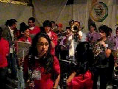 fiesta de negritos BANDA DE BOLIVIA CALDAS.avi