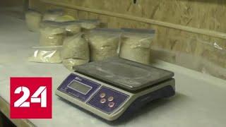 Смотреть видео В Подмосковье задержана банда наркоторговцев-конспираторов - Россия 24 онлайн