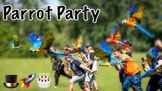 Iago & Rocket's MASSIVE Parrot Party & Free Flight Day! So Many Macaws!!!