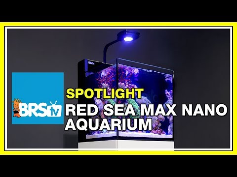How to set up a nano reef tank - Red Sea Max Nano Aquarium | BRStv Spotlight