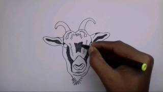 How to draw a goat face (Tribal)
