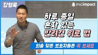 [청페강연] 하루 종일 혼자 있는 반려견 위로 법 - 강형욱