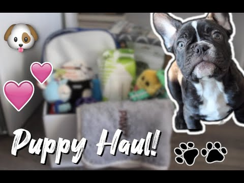 new-puppy-haul!-|-ideas-&-recommendations