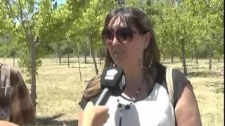 ROCA: ANIVERSARIO DE PASO CORDOBA