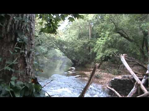 White Clay Creek Preserve (PA), Nature Preserve Trail, near Delaware -- 2011-09-10