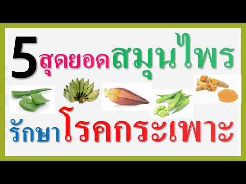 5 สุดยอดสมุนไพรรักษาโรคกระเพาะอาหาร