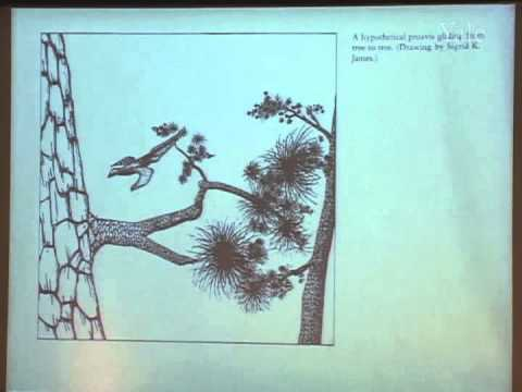 10/8/05  Richard Prum - The Evolution of Birds: Why Birds are Dinosaurs