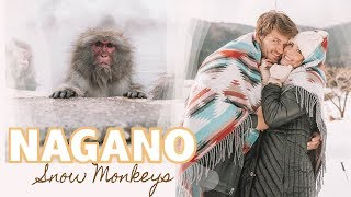 NAGANO JAPAN TRAVEL VLOG// Visiting Japan's famous snow monkeys!