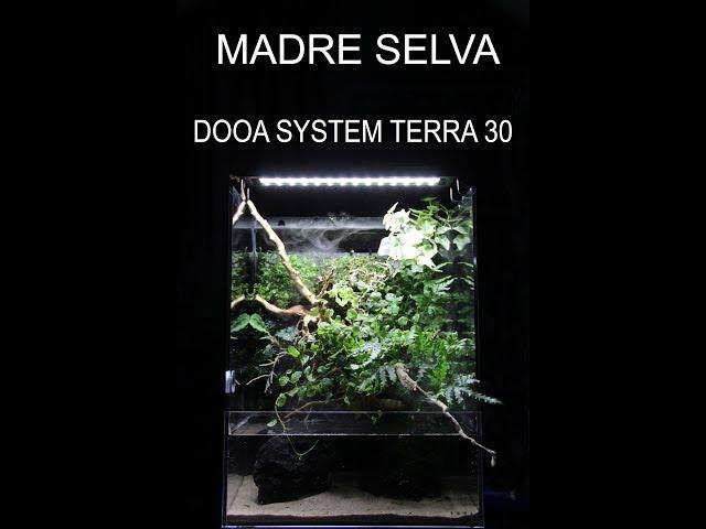 DOOA TERRA 30: montaje de acuario con jardín vertical.