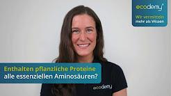 Enthalten pflanzliche Proteine alle essentiellen Aminosuren? [vegan = Proteinmangel?]