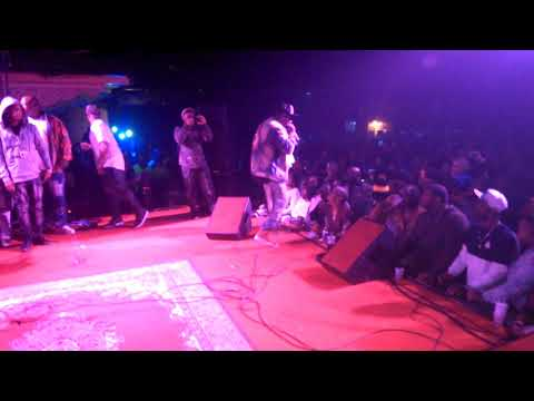 Juvenile 400 degreez  Party at the howling wolf in Rampovision(7)