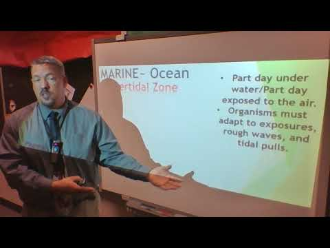 Chapt 2L4 Marine Biomes