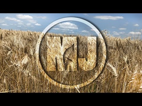 Post-Harvest Weed Control in Winter Wheat - Chris Proctor - August 10, 2018