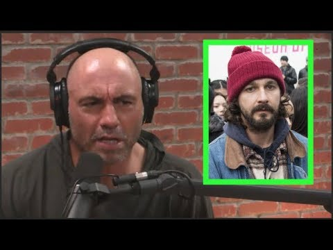"Joe Rogan on 4chan Trolling Shia Labeouf's ""He Will Not Divide Us"""