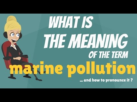 What is MARINE POLLUTION? What does MARINE POLLUTION mean? MARINE POLLUTION meaning & explanation