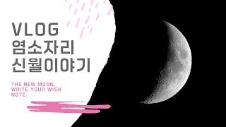 [산책VLOG] 1월 13일 염소자리 신월에 대한 생각 (문워크영상X)