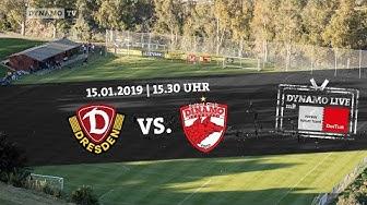LIVE: Dynamo Dresden vs. Dinamo Bukarest