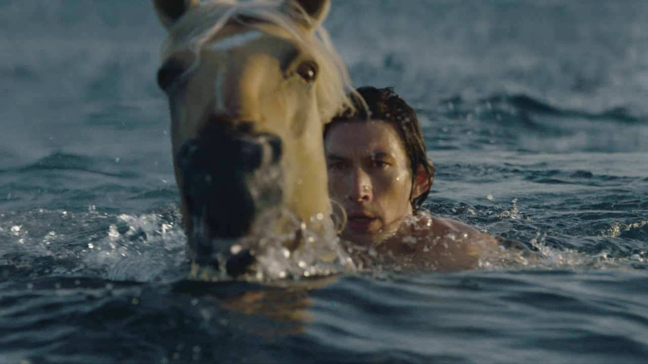 Is Adam Driver Hung Like a Horse?
