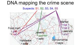 DNA Mapping the Crime Scene: Do Computers Dream of Electric Peaks?